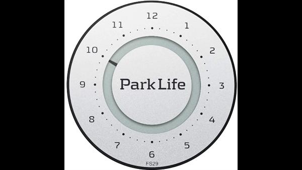 PARK LIFE P-SKIVE TITANIUM
